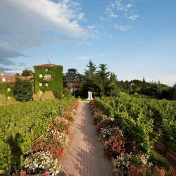 Active Hotel Paradiso Golf Gardasee Italien