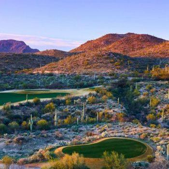 Arizona THE WESTIN LA PALOMA Golfurlaub