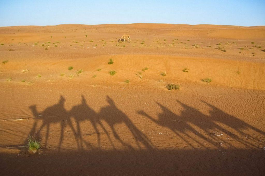 Oman Impressionen Golfsportreise 2
